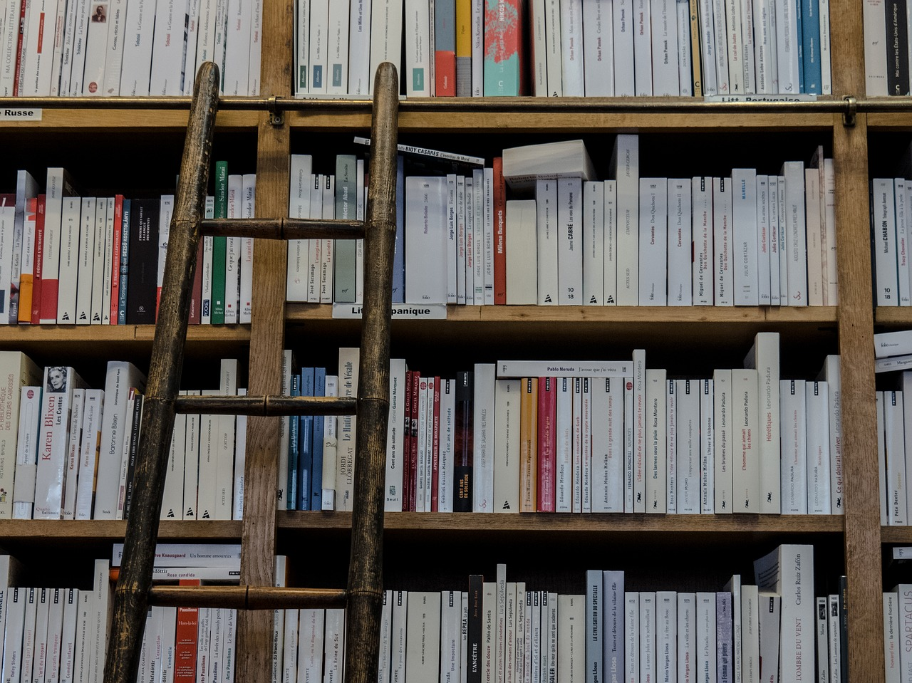 bookshop-1759619_1280